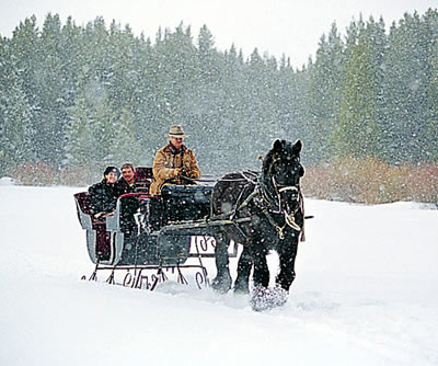 The Mane Point: A Merry Christmas Sleigh Ride